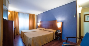 DOUBLE BEDROOM WITH PARKING Torreluz Centro Hotel